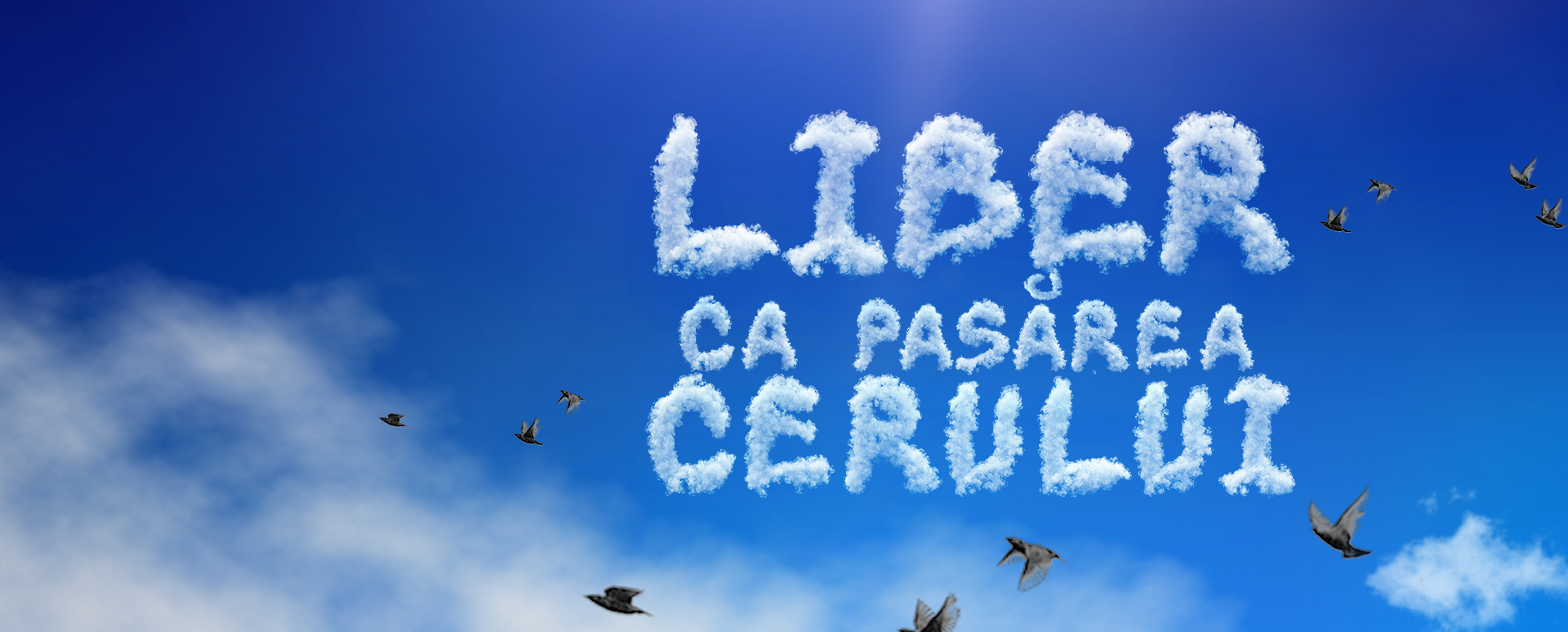 Liber ca pasarea cerului serial